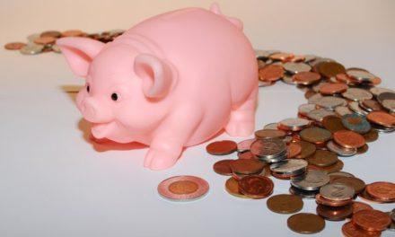Vote budget primitif 2011